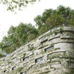 экологическая зеленая крыша