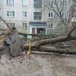 стихия в Москве